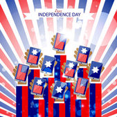 Independence day vector design — Stock Vector