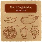 A large set of fresh vegetables. Various vegetables on the grange retro background. — Stock Vector