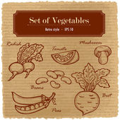 A large set of fresh vegetables. Various vegetables on the grange retro background. — Stock Vector