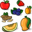 A large set of fresh fruits. — Stock Vector