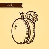Peach, fresh fruits. — Stock Vector