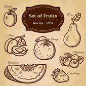 Set of fruits. — Stock Vector
