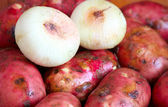 A heap of raw red potatoes and onion — Stock Photo