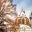 Stok fotoğraf: Famous Church of our lady before Tyn in Prague, Czech Republic