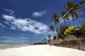 The beautiful beaches of Zanzibar — Stock Photo