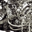 Stock Photo: Leopard on a tree