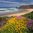 Portuguese coast — Stock Photo