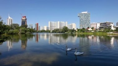 Skyline Uno City Vienna in summer at the Kaiserwasser — Stock Video #13067667