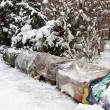 Roost of homeless in winter - Stockfoto