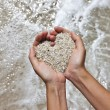 Mellow heart shaping female hands above beach — Stock Photo #21438085