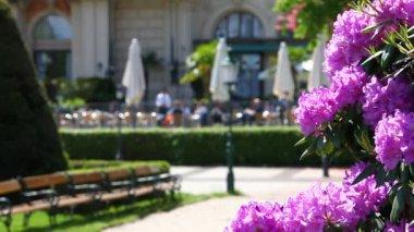 Park scene with garden restaurant — Stock Video