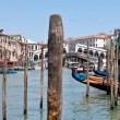Venice - Grand canal at the famous Rialto Bridge on a sunny day — Stock Video