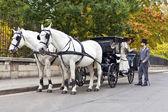 马车与老老式穿戴夫妇爱 — 图库照片