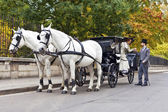 Horse Carriage with old fashioned dressed couple in love — Stock Photo