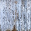 Old, grunge wood panels of wide light blue door — Stock Photo