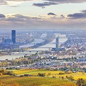 在秋天在黄昏的维也纳和多瑙河城市景观 — 图库照片