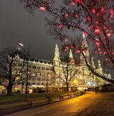 венская ратуша и традиционный рождественский рынок в ночное время — Стоковое фото