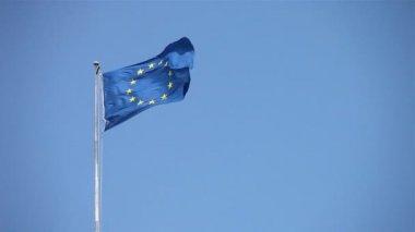 European flag — Stock Video