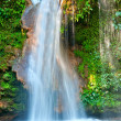 Waterfall — Stock Photo #23494223