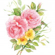 Watercolor English roses with flowers of a dogrose. — Stock Photo