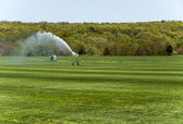 Irrigating The Sod — Stock Photo