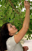 Woman with mulberry — Stock Photo