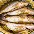 Sea breams fish on plate — Stockfoto