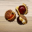 Close-up of chestnuts — Stock Photo