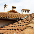 Roofs, flues. — Stockfoto
