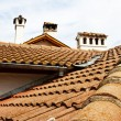Roofs, flues. — Foto Stock