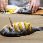 Cooked fish sea bream fish — Stock Photo #49748555