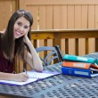 Homework Time - copyspace — Stock Photo #13135005