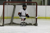 Child playing ice hockey — Stock Photo