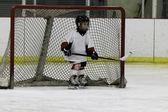Child playing ice hockey — Stock Photo