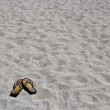 Flip flop sandals on the sandy beach — Stock Photo
