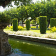 Manicured ornamental garden — Stok Fotoğraf #36130663