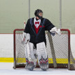 Stock Photo: Hockey goalie in his net