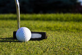 Golf ball and putter on the green — Stock Photo