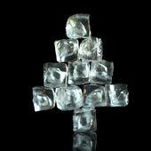 Forma del árbol de año nuevo de cubitos de hielo sobre fondo negro — Foto de Stock