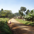 An african village in Bududa county — Stock Photo