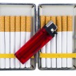 Stock Photo: Cigarette case with lighter
