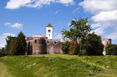 Old medieval castle — Stock Photo
