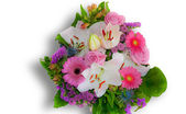 A lovely bouquet for mother — Stock Photo