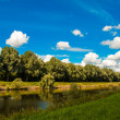 River at the countryside in flanders belgium — Stock Photo