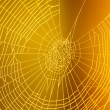 Spider web pattern for halloween scary spiderweb — Stock Photo #32739355
