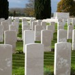 Soldiers of the great war cemetery flanders Belgium — Stock Photo