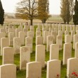 Stock Photo: World war one cemetery tyne cot belgium flanders ypres