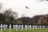 American cemetery Flanders field Belgium Waregem — Stok fotoğraf