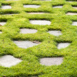 Stone path in the green grass park garden — Stock Photo #38026127