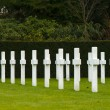Stock Photo: Americcemetery Flanders field Belgium Waregem